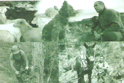 Captura del cartell del fòrum amb imatges de muntanya