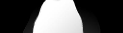 Imatge del pingüí Tux, mascota de Linux