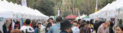 foto Sant Jordi a la Rambla del Raval