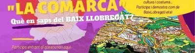 Cartell de la IGimcanaVirtual del Baix Llobregat